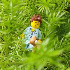 Frre Jacques, frre Jacques, Dormez-vous? Dormez-vous? Sonnez les matines! Sonnez les matines! Ding, dang, dong. Ding, dang, dong. (http://MiniPlayHouse.com) #lego #minifigures #sleepyhead #bear #ted #teddybear (dadawudawu) Tags: bear ted lego teddybear sleepyhead minifigures