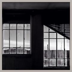 186/365 dermatologia #365 #365project #photoaday #photooftheday #blackandwhite #pavia #square #window (Lorenzo Tombola) Tags: blackandwhite square blackwhite fuji squareformat fujifilm 365 photooftheday pavia x100 365project instagram x100s