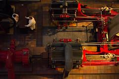 IMG_8196 (megan_angela_92) Tags: museum machine machinery steamengine birdseye