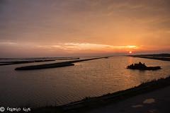 Rudere in acqua (Federico Ticchi) Tags: sunset sky italy sun color water lights italia tramonto emilia cielo di ferrara laguna acqua colori palude comacchio oasi valli