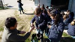 huerto-niños-colegio-madrid (27)