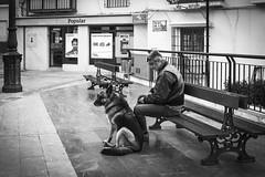 Pepe Reyes160228-022 (Pepe Reyes (jorego)) Tags: streetphotography banco bn perro torrox pueblos mlaga 2016 axarquia fotografacallejera