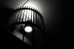 Illuminator - 40 (L D Middleton) Tags: lighting light blackandwhite bw building monochrome bulb shopping dark fuji centre cage walkway surround fujifilm passageway illuminator x100t ldmiddleton