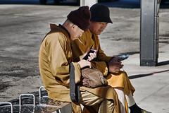 Monk break (Travels with Kathleen) Tags: city newyorkcity urban newyork outdoor manhattan buddhist fake monk smoker panhandler imposter urbanpoetry