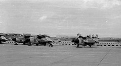 831 Squadron FAA on exercise in Malta, at HalFar 1960s (rac819) Tags: malta fairey gannet dehavilland seavenom halfar