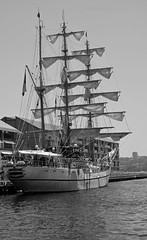Guayas BW (PhillMono) Tags: voyage cruise white black reflection monochrome sepia grey boat dock nikon sailing ship counter harbour gray vessel quarter tall mast arrival dslr departure stern darling guayas d7100