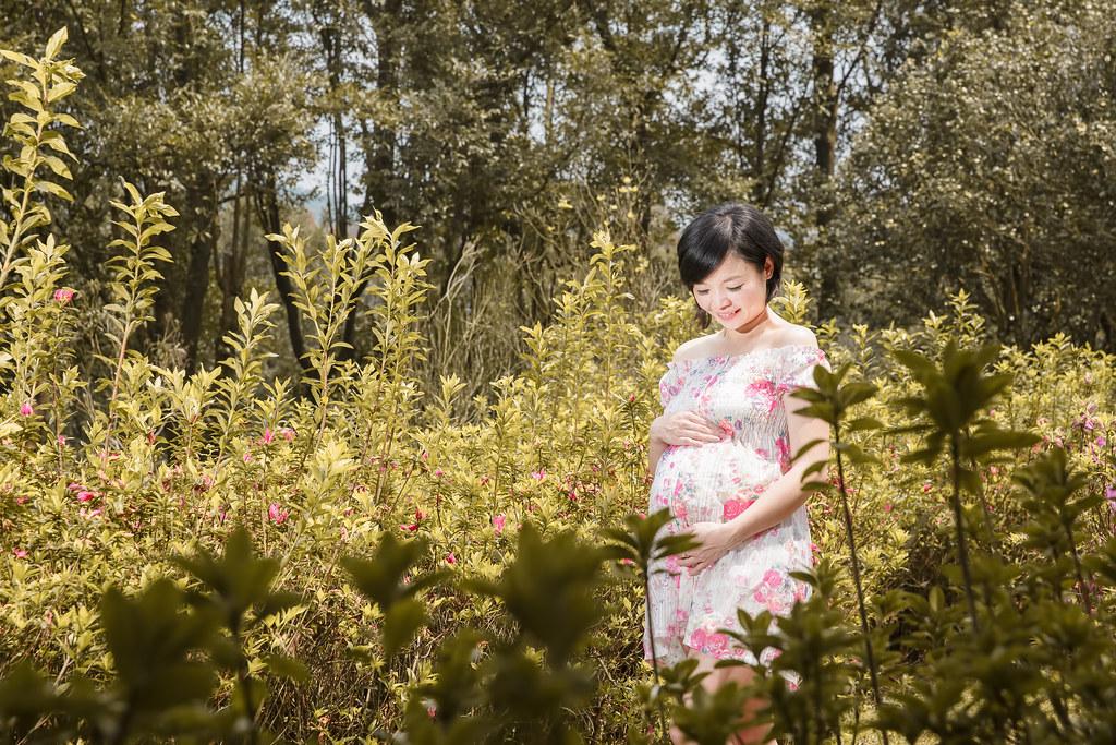 擎天崗,花卉試驗中心,孕婦寫真,孕婦攝影,擎天崗孕婦,花卉試驗中心孕婦,陽明山孕婦,Erin102
