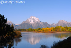 Nature is Grand-Morning at Oxbow Bend (moelynphotos) Tags: autumn reflection nationalpark fallcolors snowcapped snakeriver wyoming mountmoran grandtetons