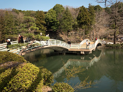 P1590568 (Rambalac) Tags: asia japan lumixgh4 bridge pond water азия япония вода мост пруд