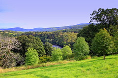Speyside (Duncan Tait) Tags: wood trees mountain mountains tree green nature water grass canon river eos highlands flora hills valley greenery picturesque moray spey speyside knockando riverspey canon60d duncantait maltwhiskycountry