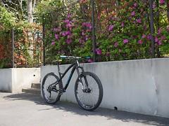 P1010909 (wataru.takei) Tags: bike japan mountainbike mtb epo canfieldbrothers lumixg20f17