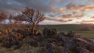 Roystone Rocks