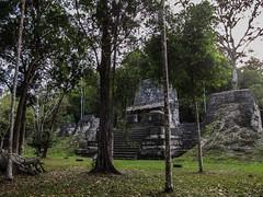 """Tikal: la Place des Sept Temples, un endroit important de la vie socio-politique <a style=""""margin-left:10px; font-size:0.8em;"""" href=""""http://www.flickr.com/photos/127723101@N04/26145470042/"""" target=""""_blank"""">@flickr</a>"""