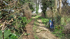 2016 Bike 180, Ride 23, 5th April. (Photopedaler) Tags: trees bicycle rural countryside track secluded byway cornishcycling 2016bike180