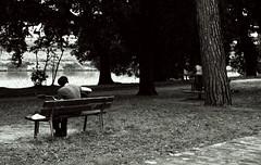 In quiete. (Chiara Mangiaracina) Tags: park street portrait people music parco nature monochrome vintage 50mm monocromo nikon guitar streetphotography natura bn portraiture musica nikkor ritratti ritratto bnw biancoenero nikon50mm nikond90 nikonitalia