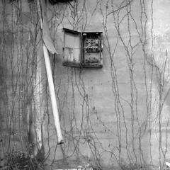 Breaker, Breaker (.:Axle:.) Tags: bw slr industry 120 6x6 film mediumformat square blackwhite nc rust ruins industrial factory fuji kodak stock northcarolina hasselblad urbanexploration leftovers fujifilm neopan powerplant ue mamu acros urbex xtol acros100 filmphotography fujiacros100 oldfort filmisnotdead hasselblad500c filmisalive kodakxtol carlzeissdistagon50mm14 believeinfilm mamuviii mamu8