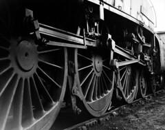 Gresley A4 60007 Sir Nigel Gresley, Aberdeen Ferryhill 61B (rac819) Tags: steam a4 railways britishrailways steamlocomotives gresley ferryhill 4498 uksteam 61b 60007 brsteam