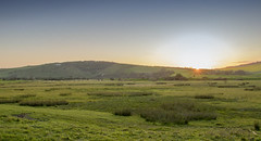 Sunset in the Cuckmere Valley (Matt Kuchta) Tags: sunset horse sun white downs sussex countryside downland