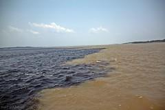 Encontro das guas do Rio Negro e Rio Solimes (Bert'sPhotos) Tags: brazil water rio gua brasil am manaus guas amazonas rionegro confluncia encontrodasguas riosolimes