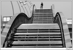 What goes up must come down. (Digifred. Thx for > 3 000 000 views.) Tags: street city blackandwhite holland netherlands amsterdam blackwhite iamsterdam nederland streetphotography canals grachten straat 2016 pythonbrug digifred pentaxk3
