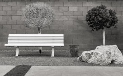 P.S.-16-173 (schmikeymikey1) Tags: bw plants building rock bench landscape bush path style objects walls
