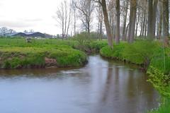 De Marck Hoogstraten (peterkleeren) Tags: motion blur river landscape nikon long exposure wandelen mark fietsen kempen vlaanderen watermolen d600 marck toerisme hoogstraten