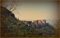 Monumento  (jose luis naussa ( + 1,7 k w. )) Tags: paisajes granada monumentos recuerdosdelaalhambra spainitalyes