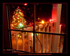 Snowy Saturday Night... Samedi Soir Neigeux (Supersyl08) Tags: christmas winter snow window december balcony hiver colonial christmastree garland christmaslights christmasdecorations neige nol railings balcon fentre guirlande dcembre 2015 sapindenol dcorationsdenol rampes lumiresdenol supersyl