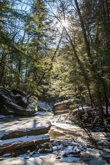 Trail Shot (Randy Keeton) Tags: trees sun snow water creek outside outdoors woods rocks stream glare outdoor hiking hills hocking