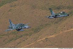 F-5EM e A-1M (Força Aérea Brasileira - Página Oficial) Tags: brazil brasília df bra voo a1m aeronave brazilianairforce f5em aviacaodecaca aeronavesdecaca fotovinciussantos sobrevooembrasilia treinamentoaereo
