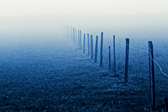fence disappears in the fog [EXPLORE] (diamir8000) Tags: blue weather fog canon fence geotagged lauterach
