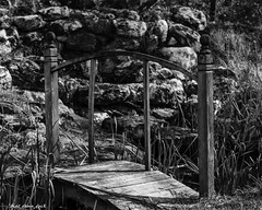The Wooden Bridge (that_damn_duck) Tags: bridge blackandwhite bw monochrome blackwhite unitedstates southcarolina walkingbridge
