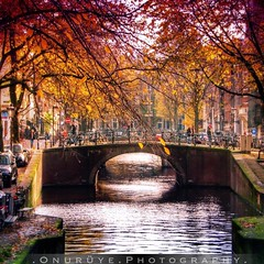 Amsterdam, Netherlands / 2014 (onuruye) Tags: life city travel holland art love netherlands rural canon turkey photography photo amazing flickr foto photoshoot trkiye cityscapes like photographers lifestyle pic blogger best follow photograph popular hdr photogram followers photooftheday canonphotography amstersam hdrphotography popularphotos objektifimden instagram