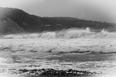 Ano Nuevo State Park-7959 ( / Jiayin Ma) Tags: california park beach water 1 sand state wave route ao ano nuevo seaocean