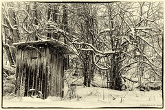"""A Cold Place To """"Go"""" (Back Road Photography (Kevin W. Jerrell)) Tags: winter snow cold rural country nostalgic outhouse winterwonderland snowcovered adobelightroom nikond60 backroadphotography silverefexpro2"""
