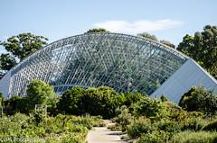 Green house adealaide botanic gardens (JPS Photography1) Tags: city urban building nikon australia d7000