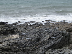 Rocks at Porthleven (Dubris) Tags: sea england rock coast seaside cornwall kernow porthleven lizardpeninsula