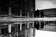 life goes on... (ma_rohe) Tags: reflection catedral reflejo reflejos reflects charco charcos catedraldeleon leonesp