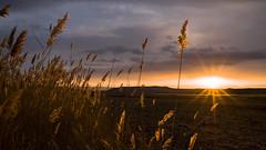 24 carat.. Golden Hours (drstar.) Tags: sunset sunlight flickr d610 goldenhours flickrturkey