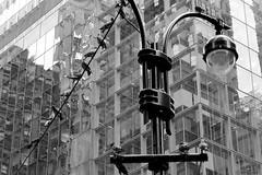 Look Up New York (Mithaq Kazimi) Tags: city nyc newyorkcity sky blackandwhite newyork building bird stairs skyscraper buildings streetlight cityscape skyscrapers pov flag stairway lookingup madison upward madisonave