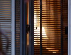 Evening Warmth (Gabriel FW Koch) Tags: light window canon outside eos evening glow dof rainyday outdoor warmth telephoto lookingin