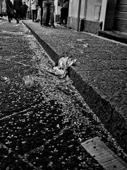 Carnival (Gaetano Serio) Tags: carnival blackwhite thomas streetphotography olympus carnevale bianconero catania sicilia biancoenero acireale leuthard sigma19mm tributetoleuthard