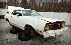 Sad little Pony (Dave* Seven One) Tags: classic ford broken dead used junkyard mustang 1970s salvage fomoco wellused pullapart mustang2