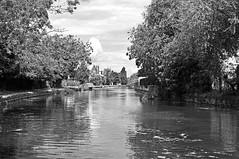 Grand Union Canal (D_Alexander) Tags: uk england london grandunioncanal blackandwhitephotography northwestlondon