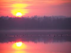 painting sunset (Gabriele Sesana) Tags: sunset lake explore