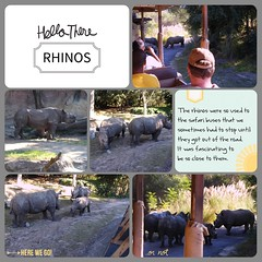 Rhinos  LOAD216 (scrapping PT) Tags: load216