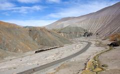 Bird's view. (david_gubler) Tags: chile train railway llanta potrerillos ferronor