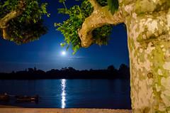 Eltville am Rhein (biglo_de) Tags: water river germany deutschland mond wasser hessen urlaub ufer fluss rhine rhein rheingau eltville mondaufgang eltvilleamrhein rheingautaunuskreis