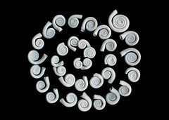 (Elsita (Elsa Mora)) Tags: sculpture art ceramic handmade spirals contemporaryart clay forms porcelain artdesign elsita organicshapes elsamora artisaway lightcolorceramic artisawayproject