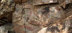 psms09 (srosscoe) Tags: texas geology schist metamorphic masontx hsugeology